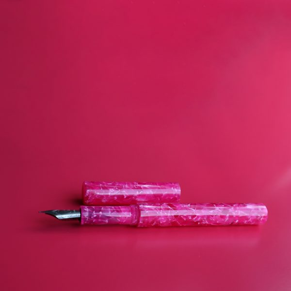 wet and wise fountain pen pink panther