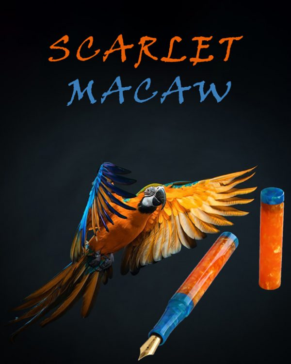 wet and wise fountain pen scarlet macaw