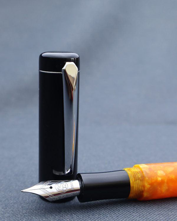 Wet and Wise Hugo Le Tigre Fountain Pen