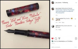 Wet and Wise Fountain Pen review